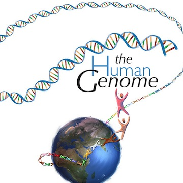 Human Genome Project completion announced